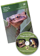 54332 - Frogs & Toads of Virginia Guide - thumbnail
