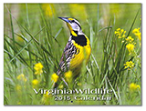 92629 - 2015 Virginia Wildlife Calendar - thumbnail