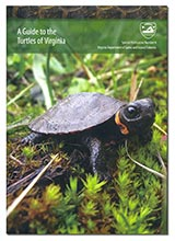 113870 - A Guide to the Turtles of Virginia - thumbnail