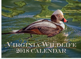 150911 - Virginia Wildlife 2018 Calendar - thumbnail