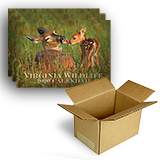 280633 - 2020 Calendar, Box of 25 - thumbnail