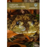 301978 - Guide, Frogs & Toads of Virginia - thumbnail